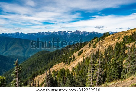 scenic view on  Hurricane Ridge Olympic National Park Washington State,Wa,Usa - stock photo