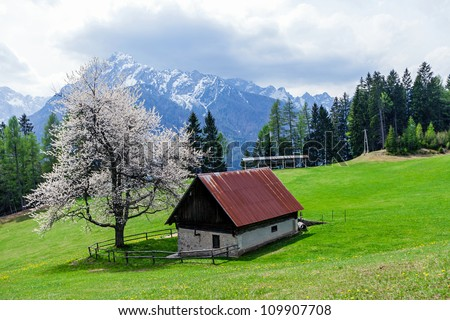 Scenic view on the house next to the pasture on mountains background, Slovenia. Early spring.