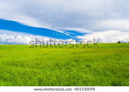 Scenic View Vibrant Nature  - stock photo
