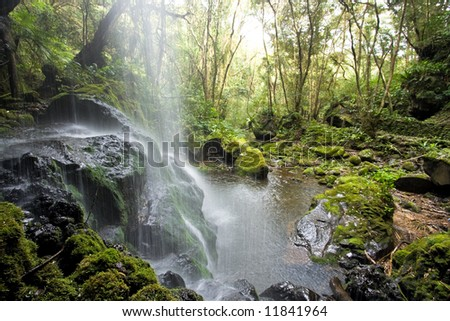 Scenic waterfall in the forest