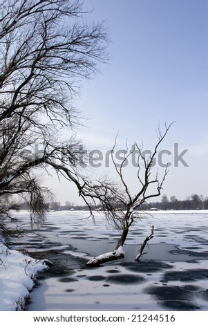 scenic winter view of frozen lake and trees - stock photo