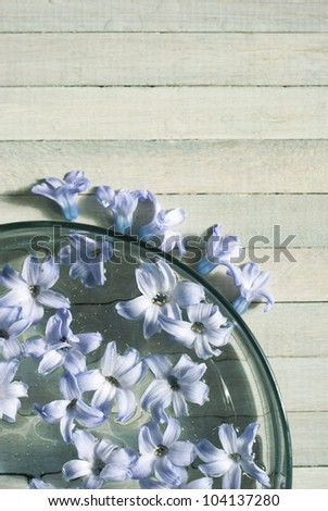 scented hyacinth flowers in aromatherapy bowl