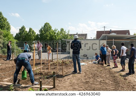 SCHARNHAUSEN, GERMANY - MAY 26, 2016: German volunteers are supporting African, Arabic and Asian refugees in setting up a small garden behind their refugee camp in Scharnhausen, Germany. Over 1