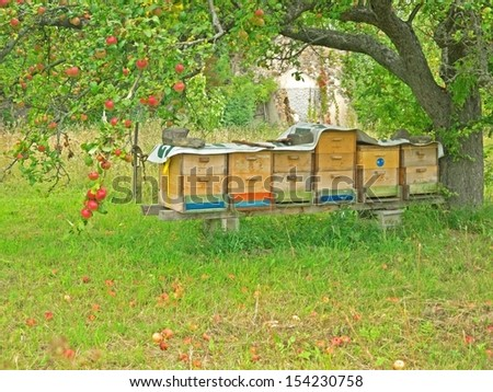 SCHILTERN, AUSTRIA - 4 SEPTEMBER 2013: Beehives at Arche Noah, which is known for its show garden with rare crop plants. Schiltern, Sept 4 2013 - stock photo