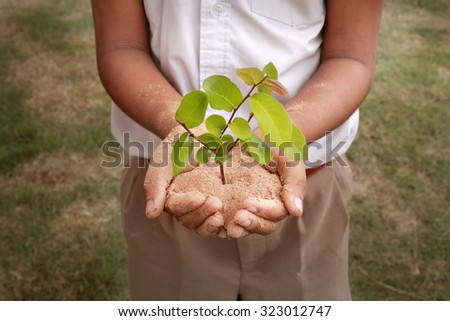 School boy hands stand holding sand and tiny plant attempt to show environment and saving green concept