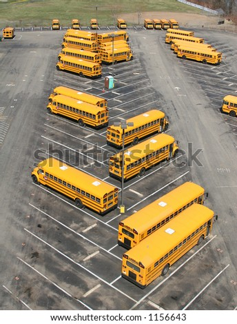 School buses parked in a lot.