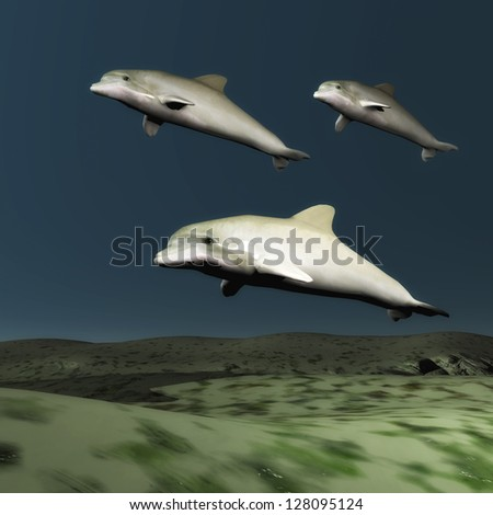 School of Dolphins - stock photo