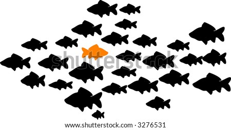 school of fish with one orange fish swimming the opposite direction