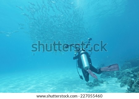 School of jack fish and diver in Dimakya island, Palawan. - stock photo