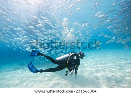 School of jack fish and diver pass through coral reef in Dimakya Island, Palawan. - stock photo