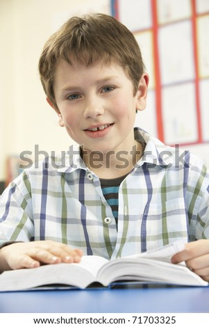 Schoolboy Studying Textbook In Classroom
