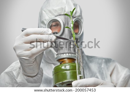 Scientist in protective uniform and respirator puts green plant in flask with tweezers