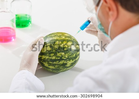 Scientist injecting chemicals into a watermelon. Shot from behind - stock photo