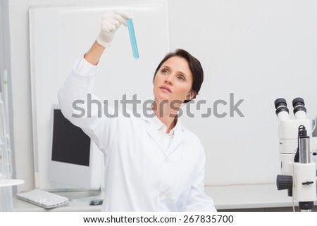 Scientist looking attentively at test tube in laboratory - stock photo