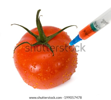 Scientist make injection into fresh red tomato - stock photo