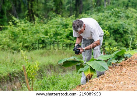 Scientist with camcoder studying plant desease