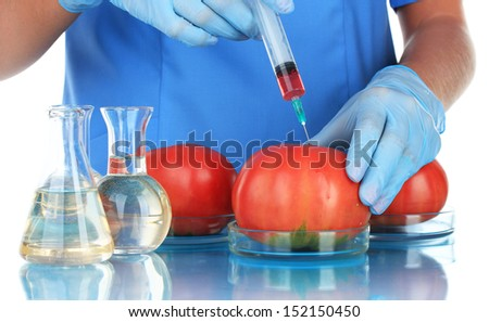 Scientists make injection into fresh red tomato in laboratory - stock photo