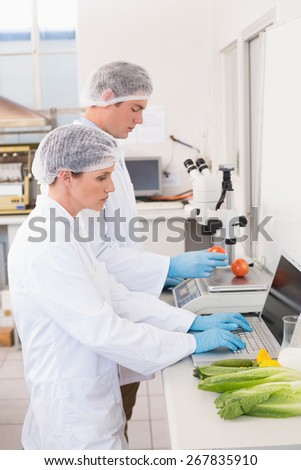 Scientists working attentively with vegetables in laboratory - stock photo