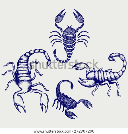 Scorpion Pandinus imperator. Collection. Doodle style. Raster version - stock photo
