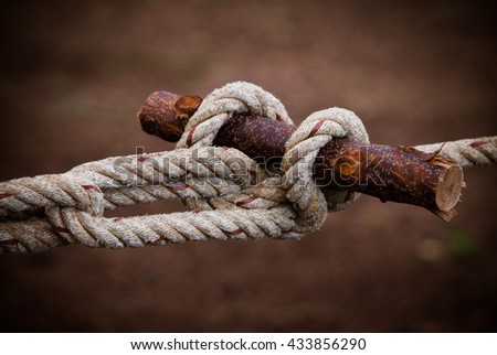 Scout knots Scout knot Wood - stock photo