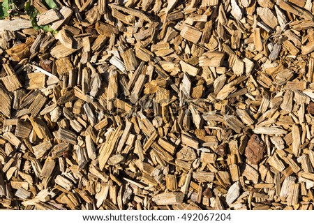 scraps of wood, wood surface,wood structure