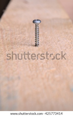 Screw on an eucalyptus wooden surface. Backgrounds and textures