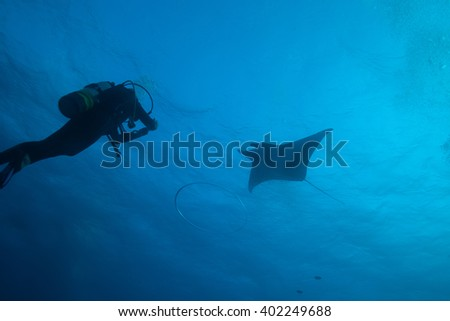 Scuba diver, and bubble ring underwater - stock photo