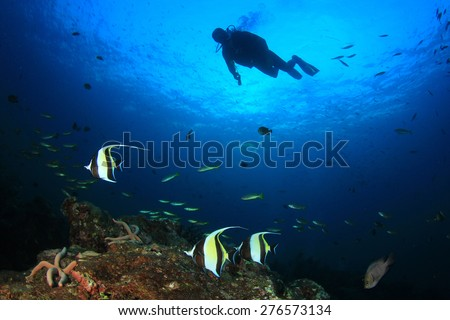 Scuba diver, coral reef, fish - stock photo