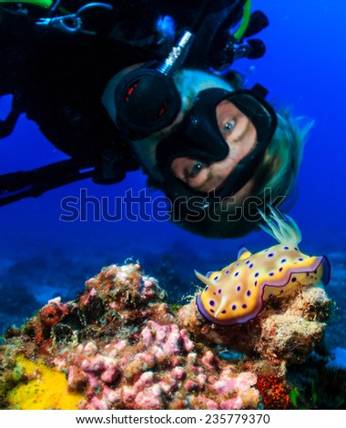 SCUBA diver examines a colorful Nudibranch on a tropical coral reef - stock photo