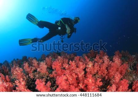 Scuba diver explores coral reef - stock photo