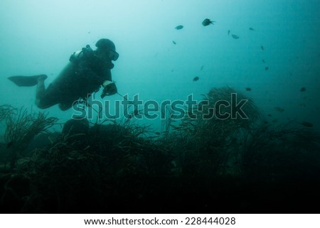 Scuba diver exploring world war II shipwreck in Coron area, Palawan, Philippines.