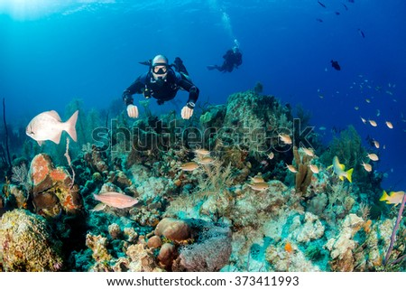 SCUBA diver in a technical sidemount configuration on a tropical coral reef