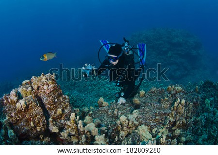 Scuba Diver photographing a Reef in Hawaii - stock photo
