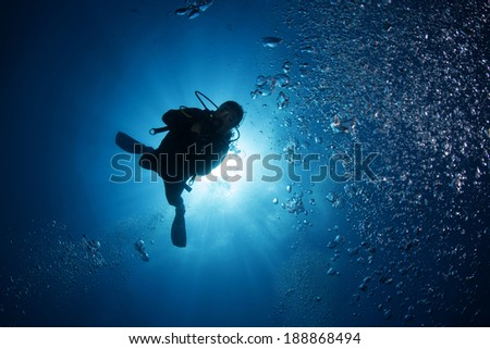 Scuba Diver Silhouette - stock photo