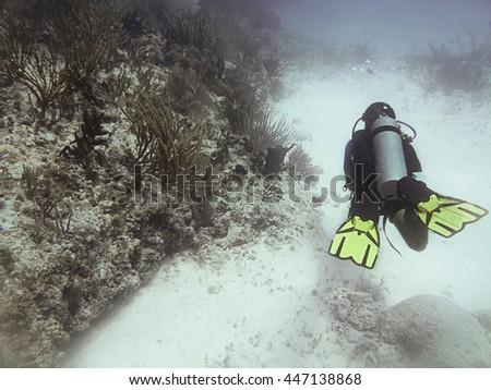 Scuba diver swimming around a coral reef - stock photo