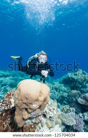 SCUBA Diver swimming next to a brain coral on a tropical reef - stock photo