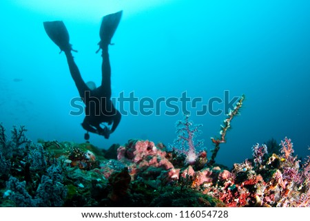 Scuba diver swimmming over reef - stock photo