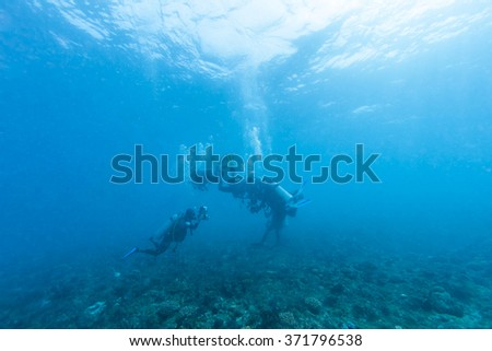 Scuba diver swims over a colorful tropical coral reef.