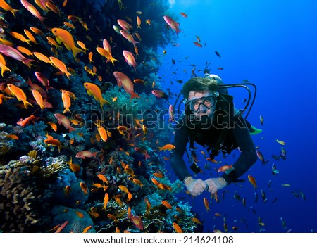Scuba Diver swims through tropical fish on coral reef  - stock photo