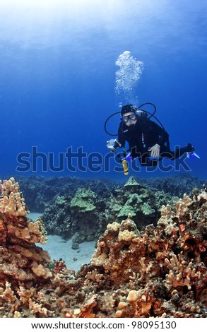 Scuba Diver with a Camera in Kona Hawaii on a reef - stock photo
