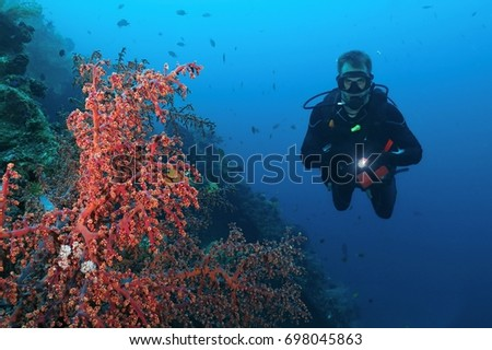 Scuba diver with flashlight in his hand swimming next to the beautiful health coral reef. Underwater scenery containing red soft coral, lots of small fish above the reef and the advanced diver.