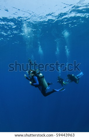 scuba divers decend on a dive