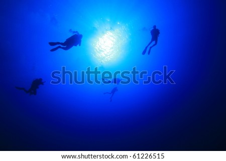 Scuba Divers in the blue