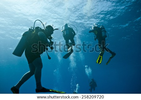 Scuba divers on the blue background - stock photo