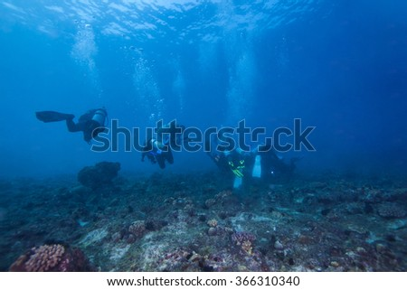 Scuba Divers passing through colorful tropical coral reef with fishes.