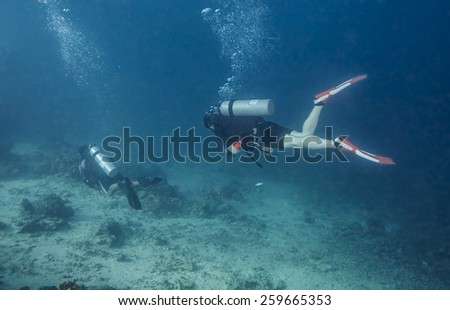 Scuba Divers passing through tropical coral reef.