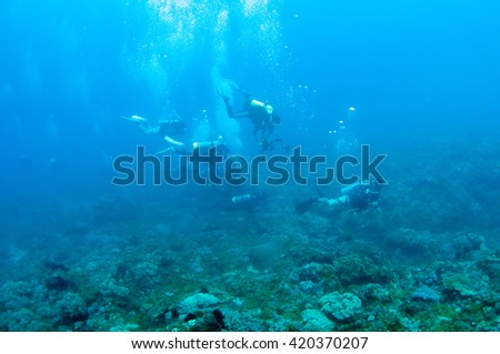 Scuba divers swim over colorful tropical coral reef