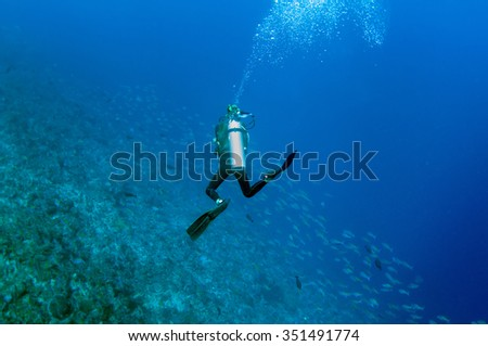 Scuba diving and underwater scene of Tulamben, Bali, Indonesia. - stock photo