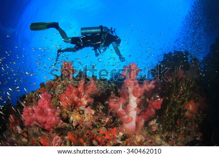 Scuba diving coral reef underwater ocean - stock photo
