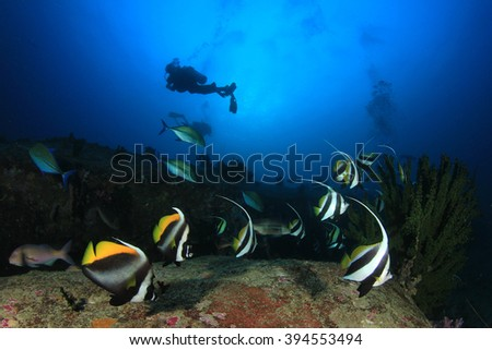 Scuba diving: divers explore coral reef with tropical fish underwater - stock photo